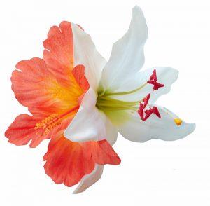 Debra May Orange Hair Flower