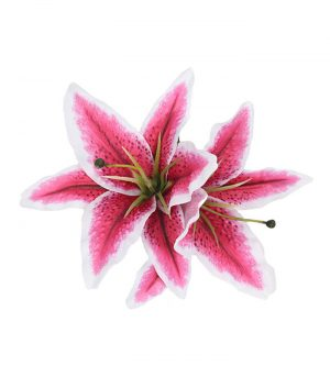 queenie_double_stargazer_lily