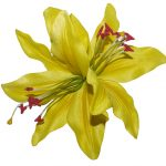 Paloma Double Lilly Yellow Hair Flower