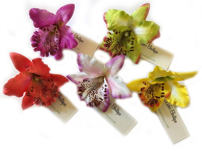 Bunny Mini Cymbidium Orchid Hair Flower