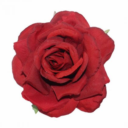 Patricia Red Rose (2-pack)